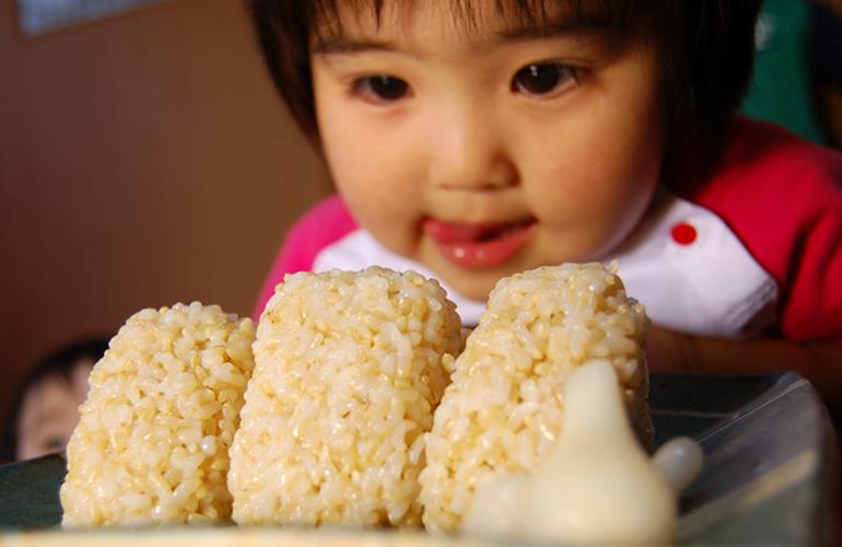 澤田農園 玄米おにぎり